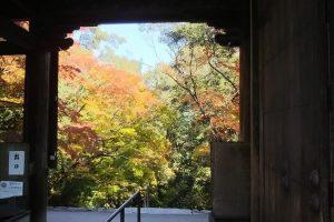 神護寺7 / 京都ブログガイド