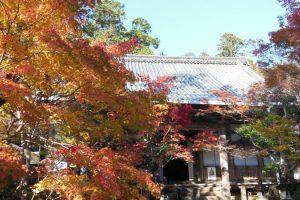 西明寺3/京都 ブログ ガイド