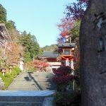 鞍馬寺4 / 京都 ブログ ガイド