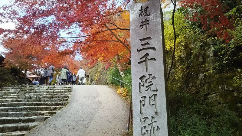 三千院2 / 京都 ブログ ガイド