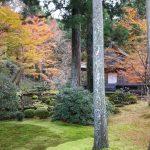 三千院1 / 京都 ブログ ガイド