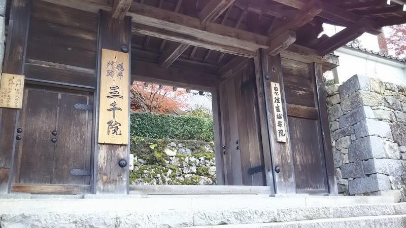 三千院4 / 京都 ブログ ガイド