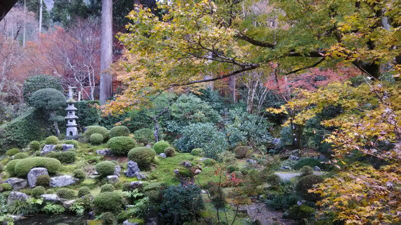 三千院6 / 京都 ブログ ガイド