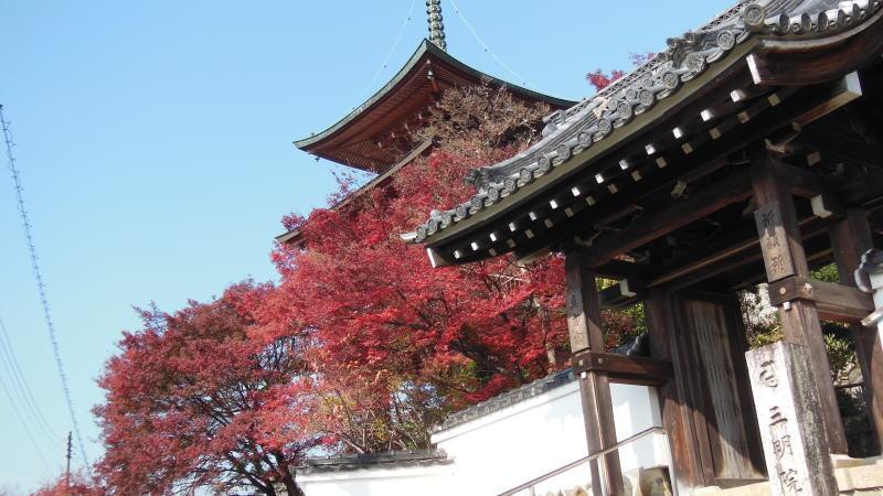 三明院1 / 京都 ブログ ガイド