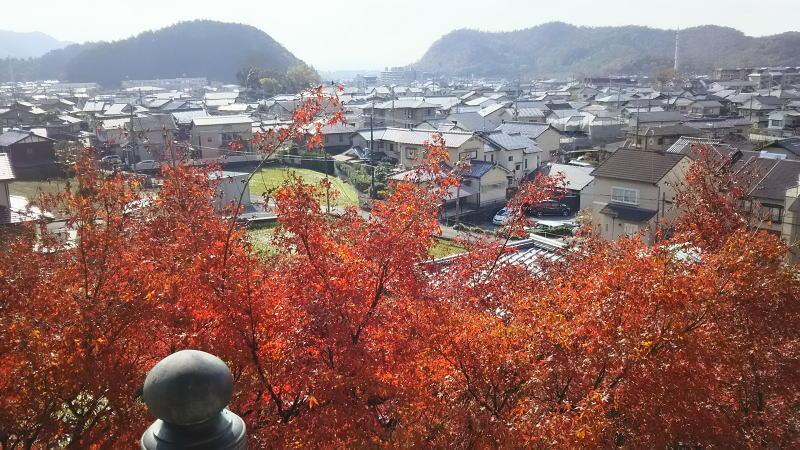 三明院8 / 京都 ブログ ガイド