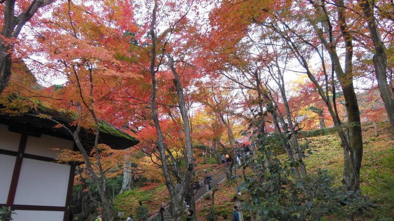 常寂光寺5 / 京都 ブログ ガイド