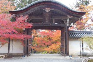 二尊院8 / 京都 ブログ ガイド