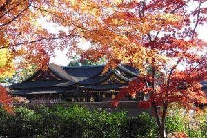 北野天満宮 御土居3 / 京都 ブログ ガイド