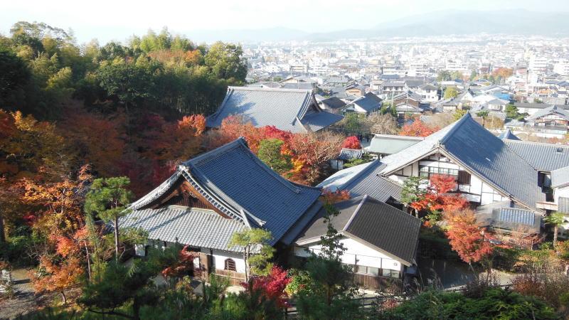 圓光寺 / 京都 ブログ ガイド