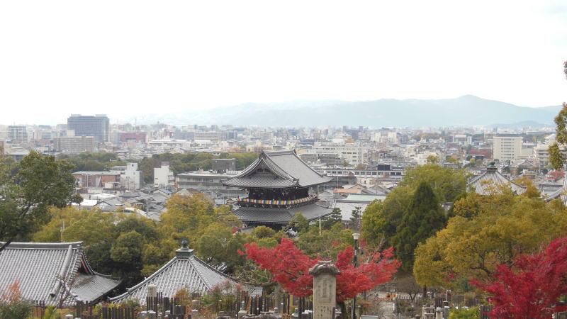 光明寺11 / 京都 ブログ ガイド