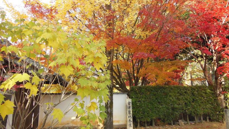 光明寺12 / 京都 ブログ ガイド