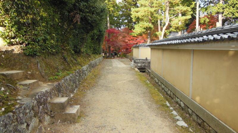 金戒光明寺14 / 京都 ブログ ガイド