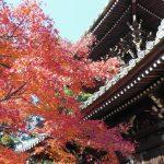 清凉寺(嵯峨釈迦堂)8 / 京都 ブログ ガイド