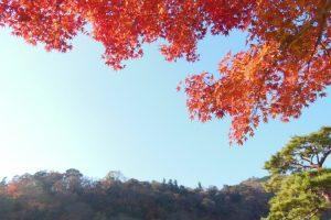 嵐山 紅葉4 / 京都 ブログ ガイド