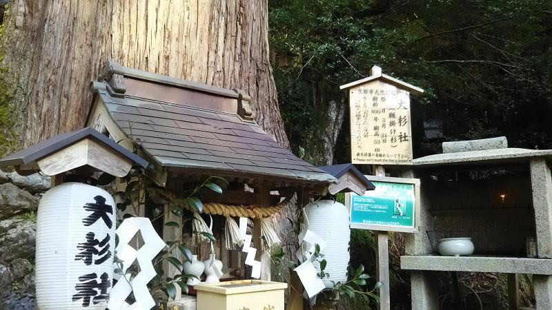 大杉社1 / 京都 ブログ ガイド