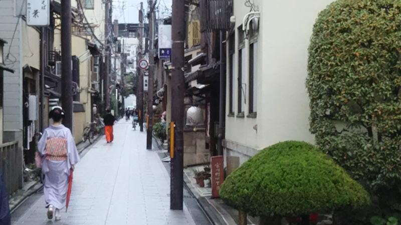 舞妓 / 京都 ブログガイド