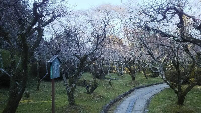 石山寺18 / 京都 ブログガイド