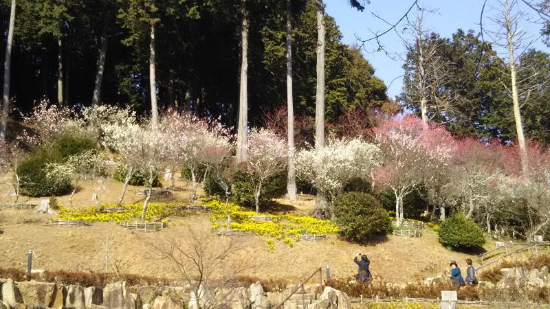 石山寺20 / 京都 ブログガイド