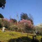 石山寺21 / 京都 ブログガイド