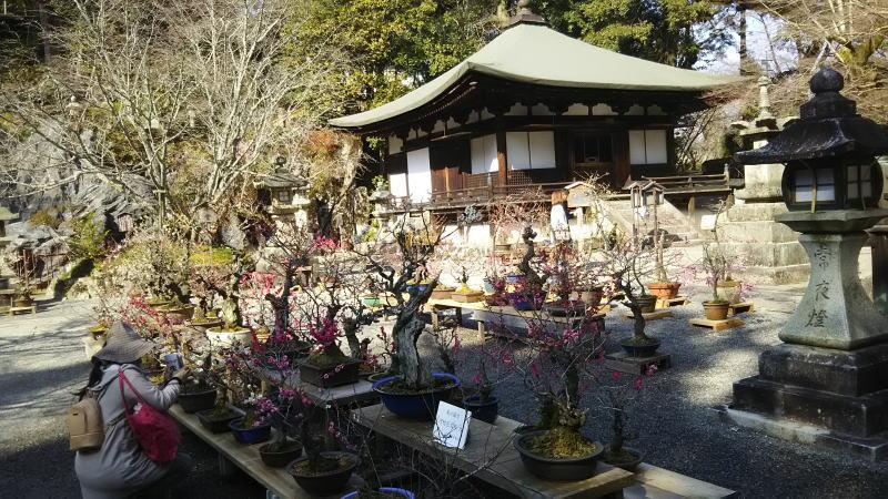 石山寺5 / 京都 ブログガイド