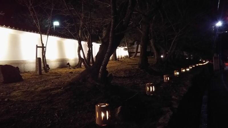 京都 東山 花灯路 / 京都 ブログガイド