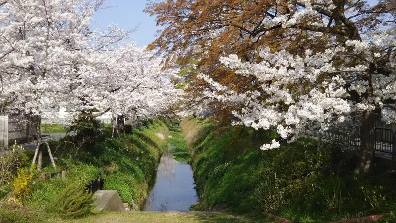 松ヶ崎浄水場前2 / 京都 ブログ ガイド