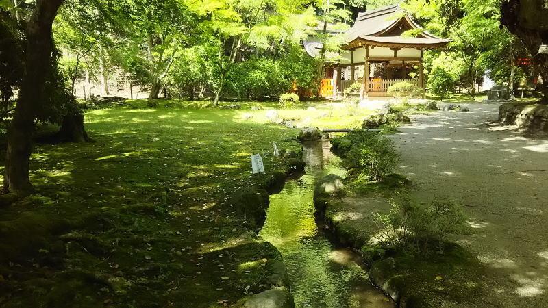 賀茂別雷神社(上賀茂神社)16/ 京都 ブログ ガイド