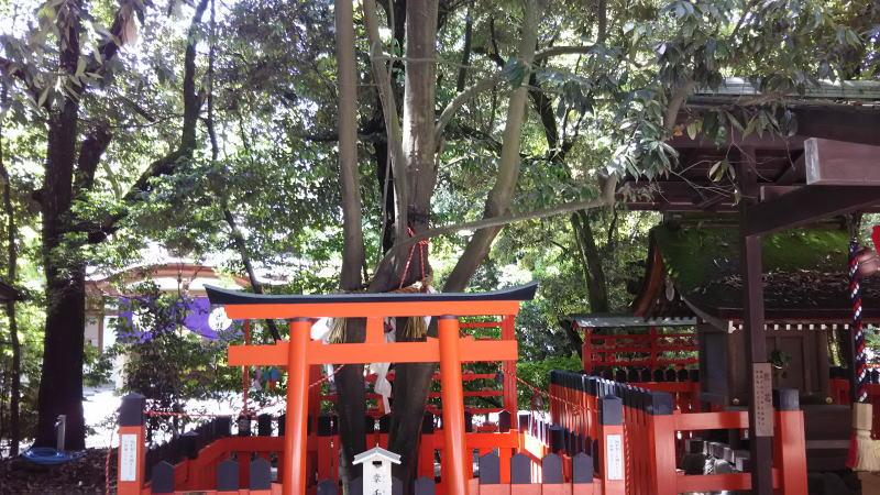 賀茂御祖神社(下鴨神社)7 / 京都 ブログ ガイド