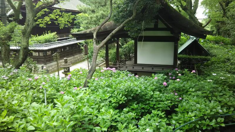 藤森神社17 / 京都 ブログ ガイド