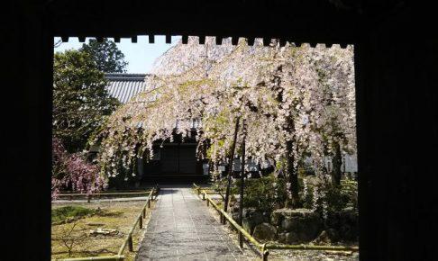 上品蓮台寺 / 京都 ブログ ガイド