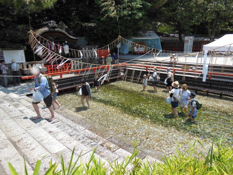 下鴨神社 みたらし祭10 / 京都 ブログ ガイド
