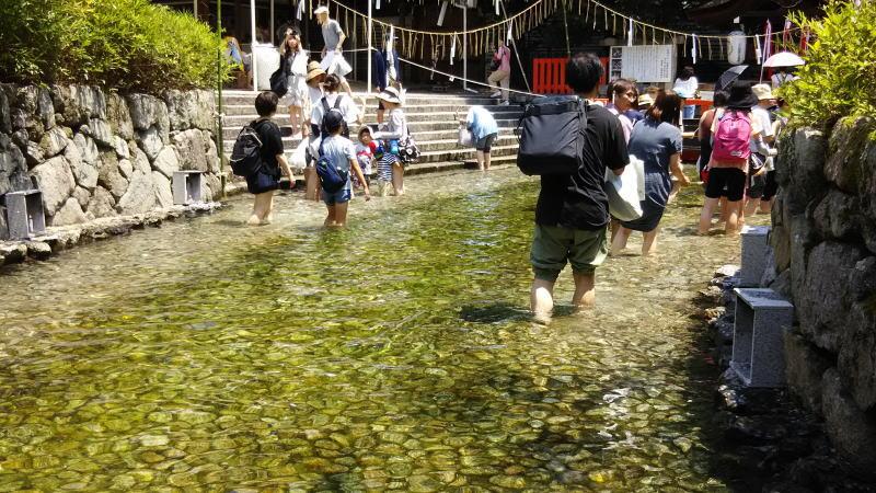 下鴨神社 みたらし祭6 / 京都 ブログ ガイド