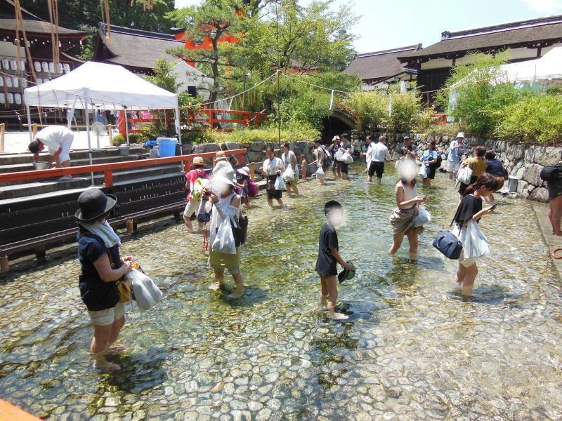 下鴨神社 みたらし祭7 / 京都 ブログ ガイド
