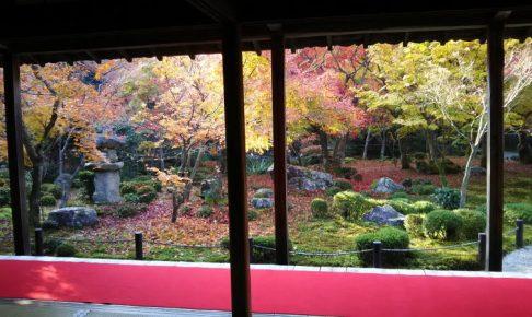 圓光寺 2018 / 京都 ブログ ガイド