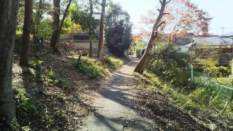 三明院への道 / 京都 ブログ ガイド