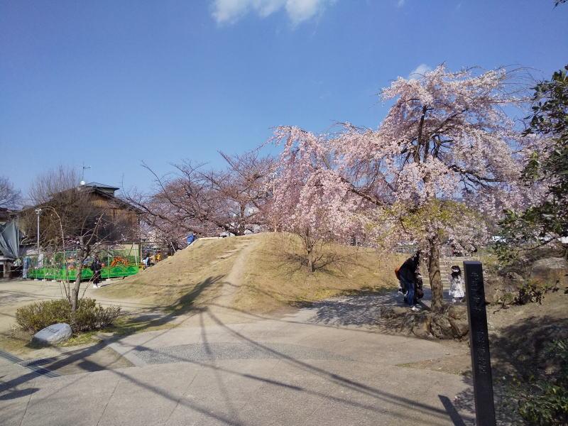 先斗町公園 / 京都 ブログ ガイド