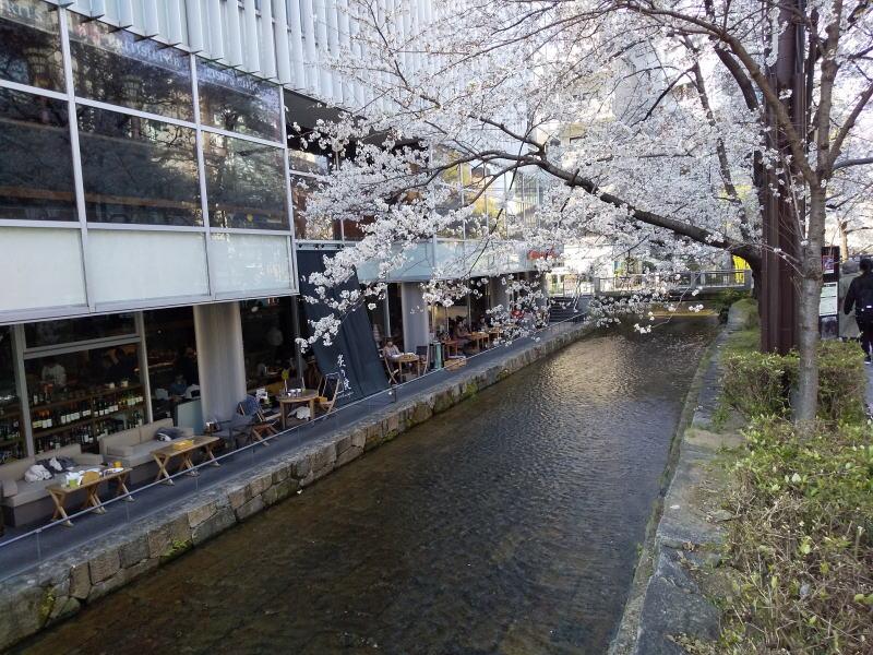 三条~御池 / 京都 ブログ ガイド