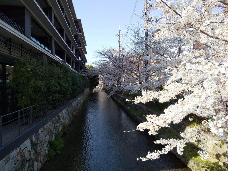 上樵木町 / 京都 ブログ ガイド