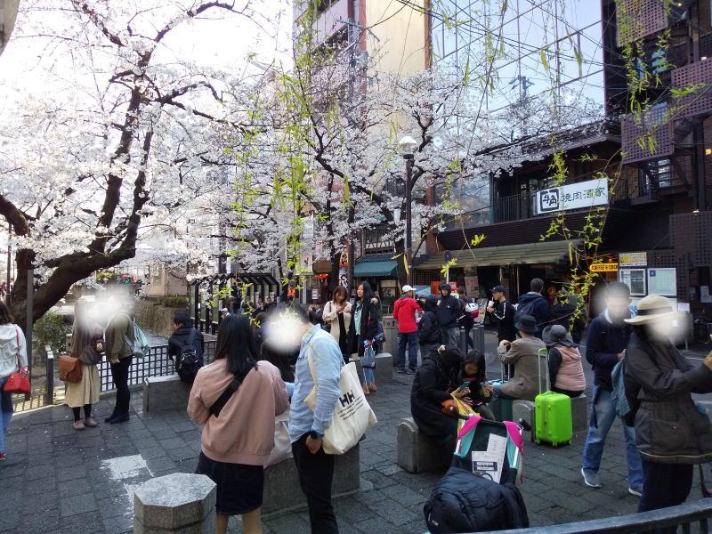 四条~三条 / 京都 ブログ ガイド