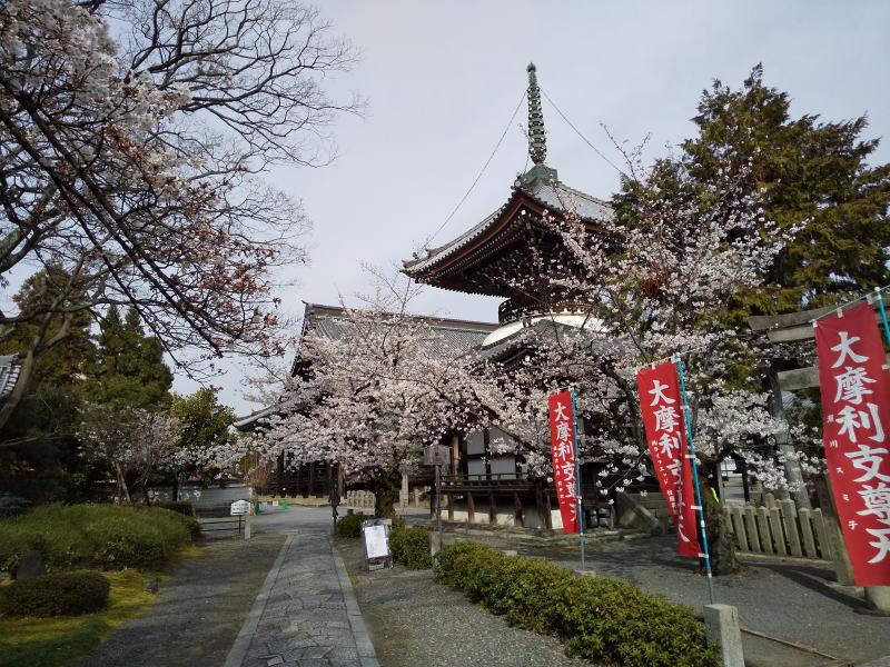 本法寺 多宝塔 / 京都 ブログ ガイド