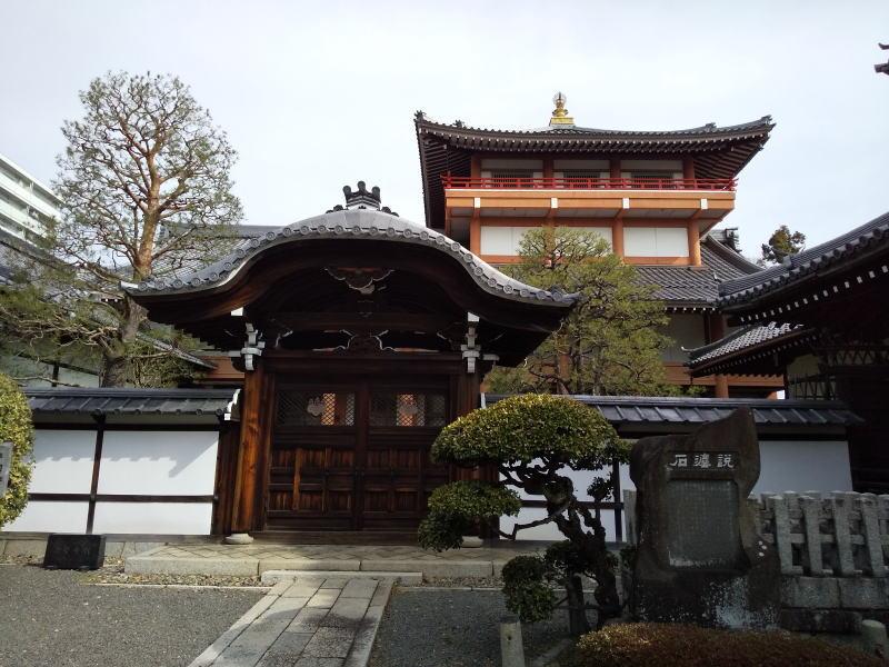 京都 桜 洛中 本法寺 2019 / 京都 ブログ ガイド