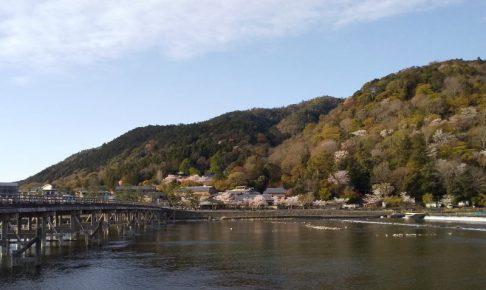 京都 桜 洛西 嵐山 2019 / 京都 ブログ ガイド