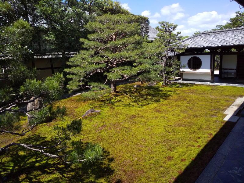 本堂前の庭 / 京都 ブログ ガイド