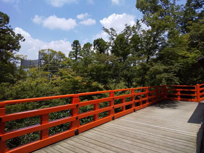 北野天満宮 御土居の青もみじ/ 京都 ブログ ガイド
