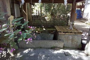 染井 / 京都 ブログ ガイド