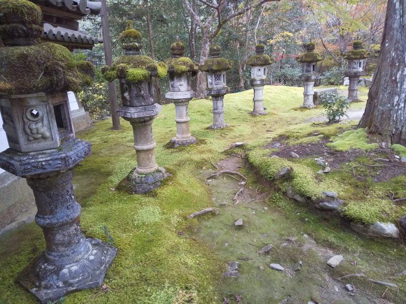 表門横の苔燈籠/ 京都 ブログ ガイド