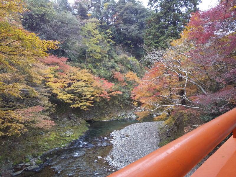 橋から下流の眺め / 京都 ブログ ガイド