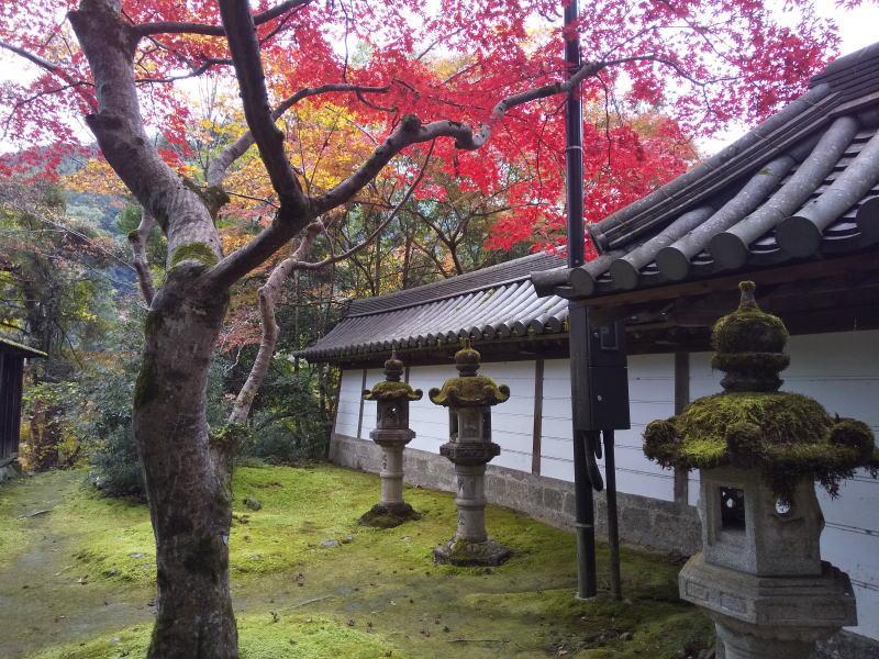 表門横の紅葉/ 京都 ブログ ガイド