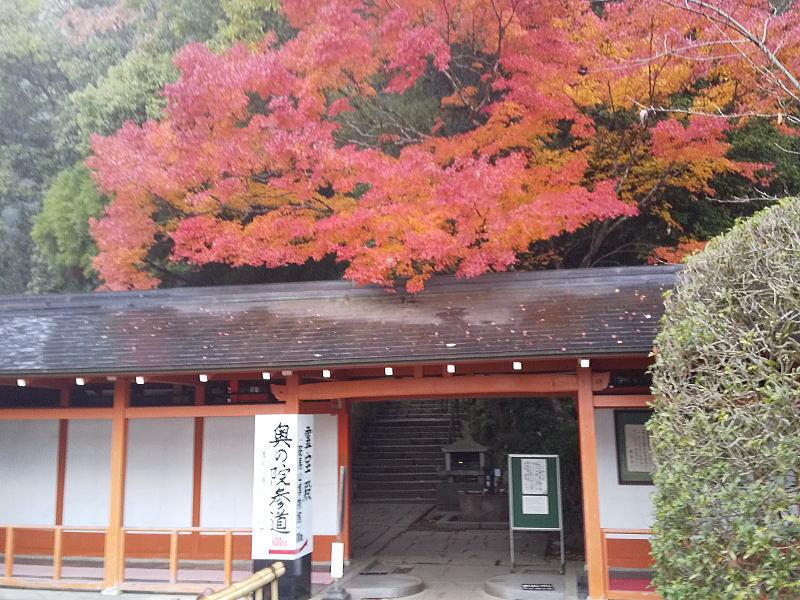 奥の院参道 / 京都 ブログ ガイド