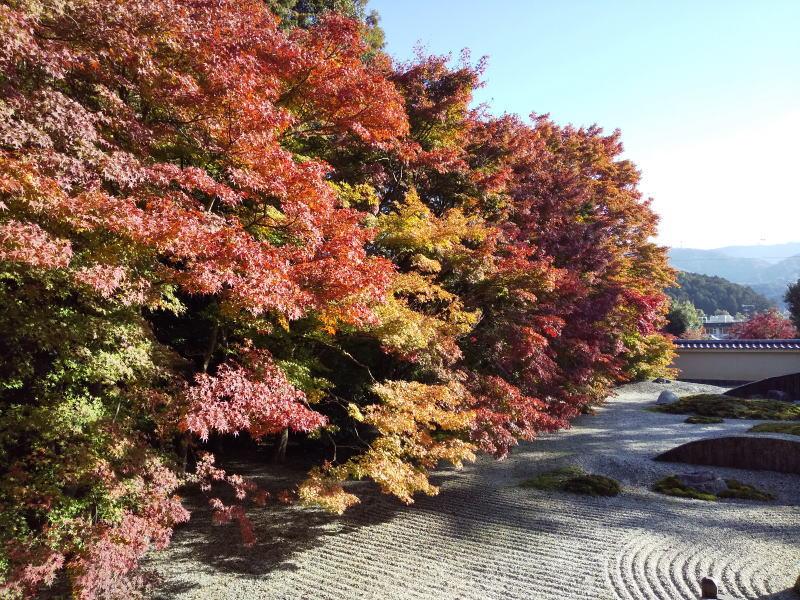 こころのお庭 / 京都ブログガイド